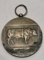 Médaille Luxembourg ,  Concours Des Taureaux D'élite 1967 - Tokens & Medals