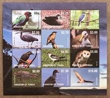 Tonga 2012; Fauna & Animals; Birds; Scarce Sheet!! MNH** VF; CV 60 Euro!! - Collections, Lots & Series