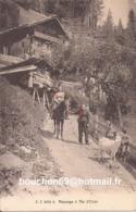 Suisse - Champéry - Paysage à Val D'Illiez Jj3089A Ziege Goat Chevre - VS Wallis