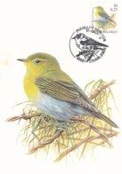 Bizin Carte Maximum Pouillot Siffleur 09.09.2000 - 1985-.. Oiseaux (Buzin)