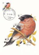Bizin Carte Maximum Bouvreuil Pivoine 12.09.1988 - 1985-.. Oiseaux (Buzin)