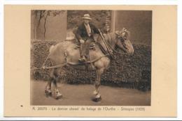 CPA PK  LE DERNIER CHEVAL DE HALAGE DE L'OURTHE  STREUPAS 1929 - Belgique