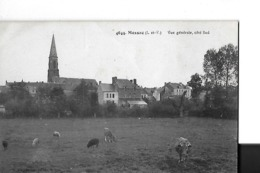 MESSAC  N 4644  VUE GENERALE COTE SUD  VACHES       DEPT 35 - France