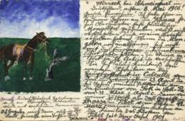 Mongolia China, Horse On Mongolian Prairie (1906) Hand Painted Postcard READ!! - Mongolia