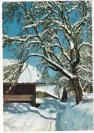 203 - L'Hiver Dans Les Alpes- 'Neige Et Soleil'  - (1966) - Megève
