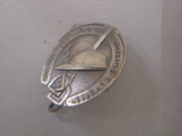 Epingle Pin Broche CHEVAL EQUITATION Kon Ned Federatie Van Landelijke Rijvereen KNFLR - Equitation