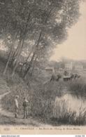CPA CHAVILLE 92 - Au Bord De L'étang De Brise-Miche - Chaville