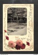 88 - ÉPINAL - Photo Collée Sur Carte Fantaisie - 1902 - RARE - Epinal
