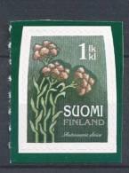 Finlande 2010 N° 1977 Neuf Fleur, Pied De Chat Dioïque - Finland