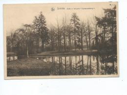 Schilde - Zicht In Het Park Spreeuwenborg ( Gelopen Kaart ) - Schilde