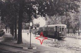 MILANO Foto Di TRAMWAY. Ligne 29. Motrice N°4037. - Milano