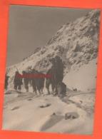 Alpini Con Cane Mascotte In Marcia Sulla Neve Grande Foto Anni 30 - War, Military