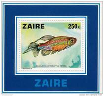 Zaire Hb 2 - Zaire