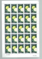 CAMEROUN     Feuille De 25 Timbres  Fruit  Pamplemouse Citrus Crandis Coin Daté Du 15/4/1967 - Kamerun (1960-...)