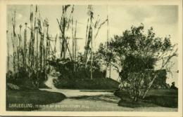 Tibet Thibet, Tibetan Worship Temple Observatory Hill (1920s) Postcard - Tibet