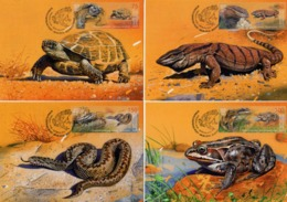 Kyrgyzstan - Express Post - 2019 - Red Book Of Kyrgyzstan - Reptiles And Amphibians - Maximum Cards Set - Kirghizistan