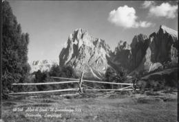 DOLOMITI - ALPI DI SIUSI - IL SASSOLUNGO - VIAGGIATA 1972 - Alpinismo