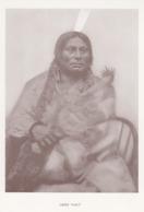 """Chief """"Gall"""", 1930-50s - Indiens De L'Amerique Du Nord"""