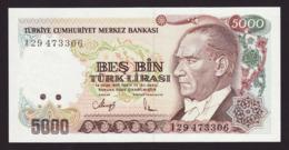 TURKEY - 5.000 Lira L.1970 {Türkiye Cumhuriyet Merkez Bankası} UNC P.198 - Turchia
