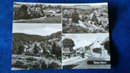 Tanne Harz Germany - Wernigerode