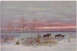 Graf Murawjew.Ostrowsky Edition Nr.1277 - Russie