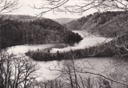 LES ANCIZES -  Dépt 63 - Méandres Des Marteaux - Plan D'eau Du Barrage De Besserve - LES FADES  - CPM - Photo Véritable - Autres Communes