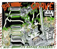 CD N°192 - BACK FROM THE GRAVE VOL. 2 - COMPILATION ROCK GARAGE PUNK - Punk