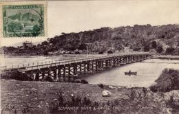1625/ Tasmania, Scamander River & Bridge East Coast - Australie