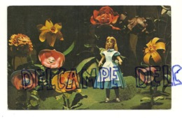 Walt Disney World. The Mickey Mouse Revue. Alice In Wonderland 1973 - Disneyworld
