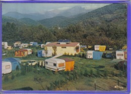 Carte Postale 66. Arles-sur-Tech  Camping Caravaning Du Vallespir  Très Beau Plan - Francia