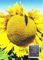 33867. Tarjeta Maxima VADUZ (Liechtenstein) 2004, Girasoles. Sunflowers, Sonnenblume - Maximumkaarten