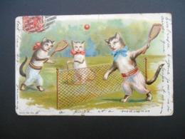 2 Chats Jouant Au Tennis Devant Chatte Avec Ombrelle  - Gaufrée - Série 750 N° 38 - Katten