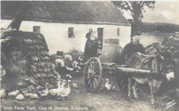 IRLANDE.  IRISH FARM YARD GAP OF DUNLOE KILLARNEY.  ATTELAGE ANE - Ireland
