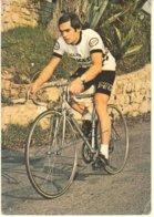 CYCLISTE RACHEL DARD-CARTE DEDICACEE - Ciclismo
