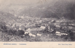 Bohan-sur-Semois Panorama Circulée En 1909 - Vresse-sur-Semois