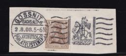 SONDERSTEMPEL GÖSSNITZ - ALTENBURG XX. Dt. PHILATELISTENTAG V. 2.8.1908 - Allemagne