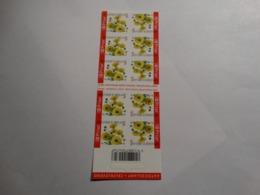 2005 - B55 - Fleur Chrysanthème. - Booklets 1953-....