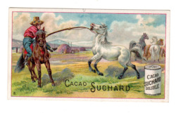 Chromo Chocolat Suchard, 130 / 8, Cheveaux - Suchard