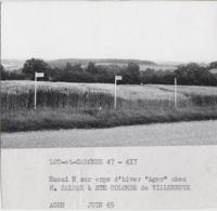 """Agriculture - Photographie - Sainte-Colombe De Villeneuve 82 - Orge """"Ager"""" - Exploitation M. Salban -  Photo - Landbouw"""