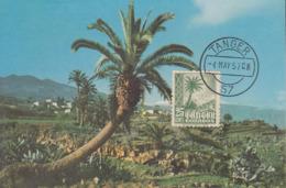 Carte  Maximum  MAROC  ESPAGNOL   TANGER  1957 - Spanisch-Marokko