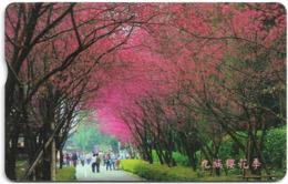 Taiwan - Chunghwa Telecom (Chip) - Forest #2 - 100U, 2008, Used - Taiwan (Formosa)