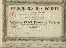 ACTION DE 100 FRS - TOURBIERES DES ECHETS  -01 - DIVISE EN 500 ACTIONS - ANNEE 1918 - Agriculture