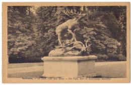 Tervueren - Le Parc. Cerf Aux Abois /P01/ - Tervuren