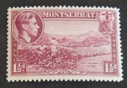 MONTSERRAT YT 96 B  NEUF*  ANNÉE 1938/1943 - Montserrat
