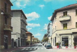 BRUSUGLIO DI CORMANO, MILANO - Via Vittorio Veneto. Tintoria, Tabacchi E Bar - Fg, Vgt - Milano