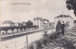 Cpa 1146  BELLAC LES PROMENADES - Bellac