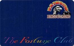 Rainbow Casino - Nekoosa, WI USA - BLANK Slot Card With DLR CP Bottom Right - Casino Cards