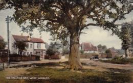 Horsley, Gloucestershire, Uk, 00-10s ; The Village Oak - Altri