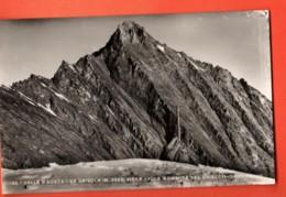MTU-24 Valle D'Aosta La Grivola Le Grivois Vue Du Sommet Du Glacier De Trejo. SACAT 32, Non Circ. - Non Classés