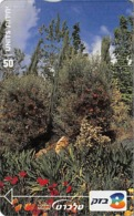 The Botanical Gardens - Landschappen